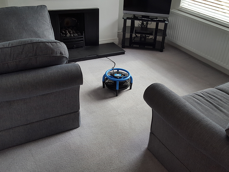 Carpet Cleaners in Belfast