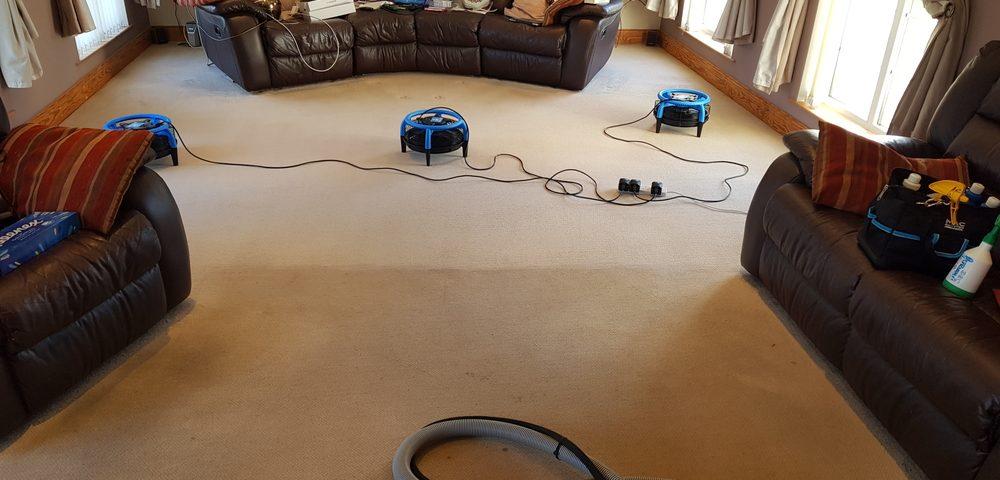 End of tenancy carpet cleaning belfast