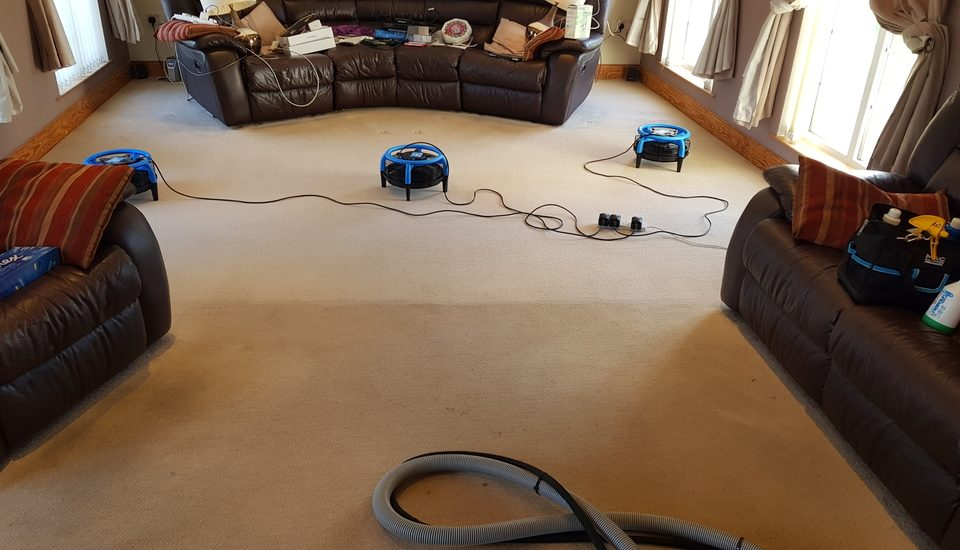 End of tenancy carpet cleaning belfast